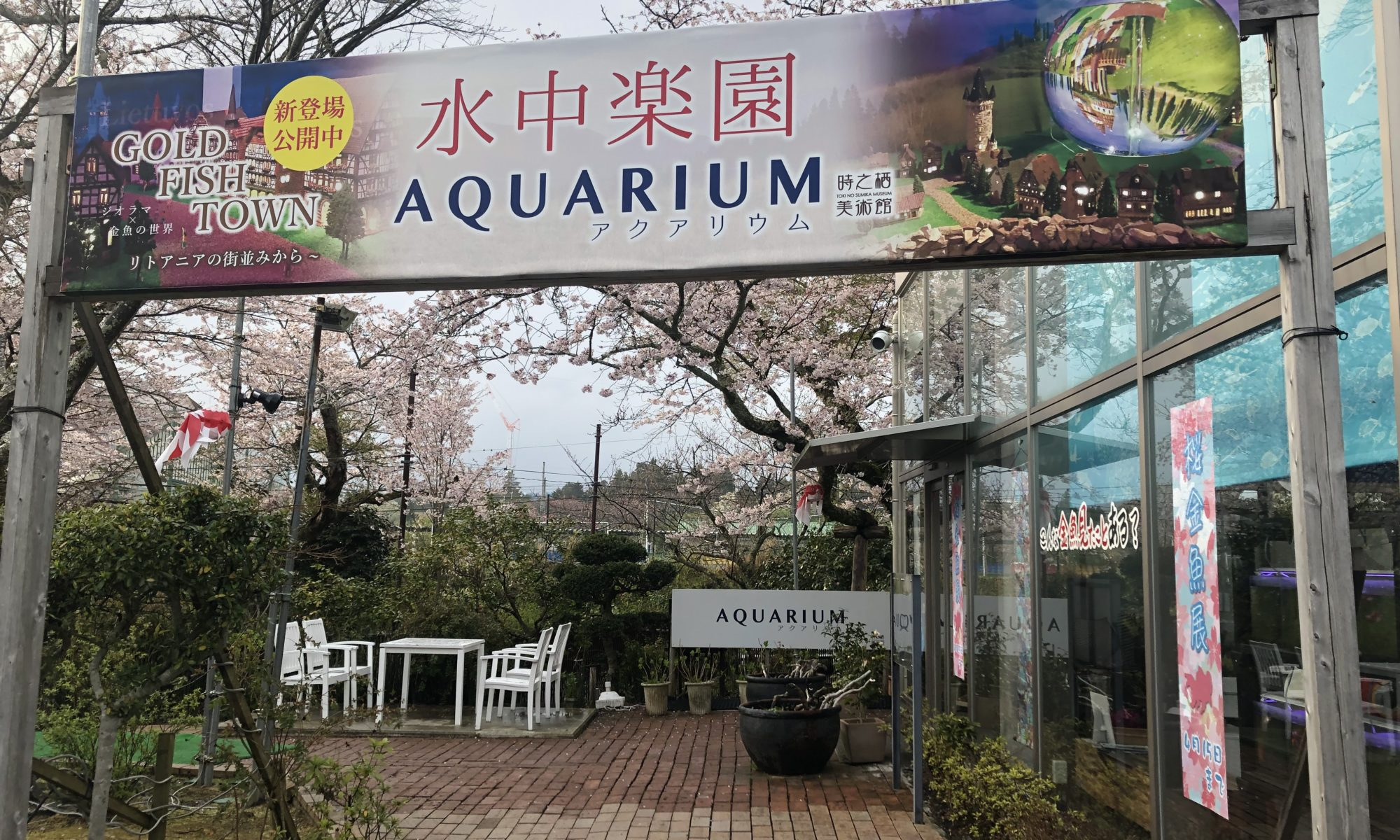 水中楽園AQUARIUM