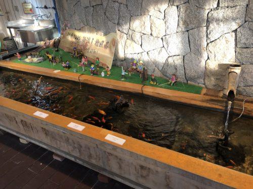 金魚の温泉